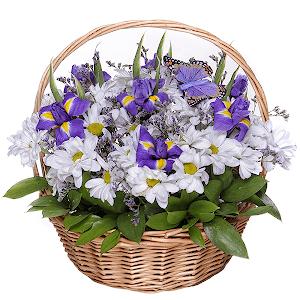 Любимый сюжет +30% цветов с доставкой в Казани