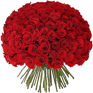 Букет из 101 красной розы с доставкой в Казани