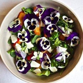 Вкусные блюда из летних цветов